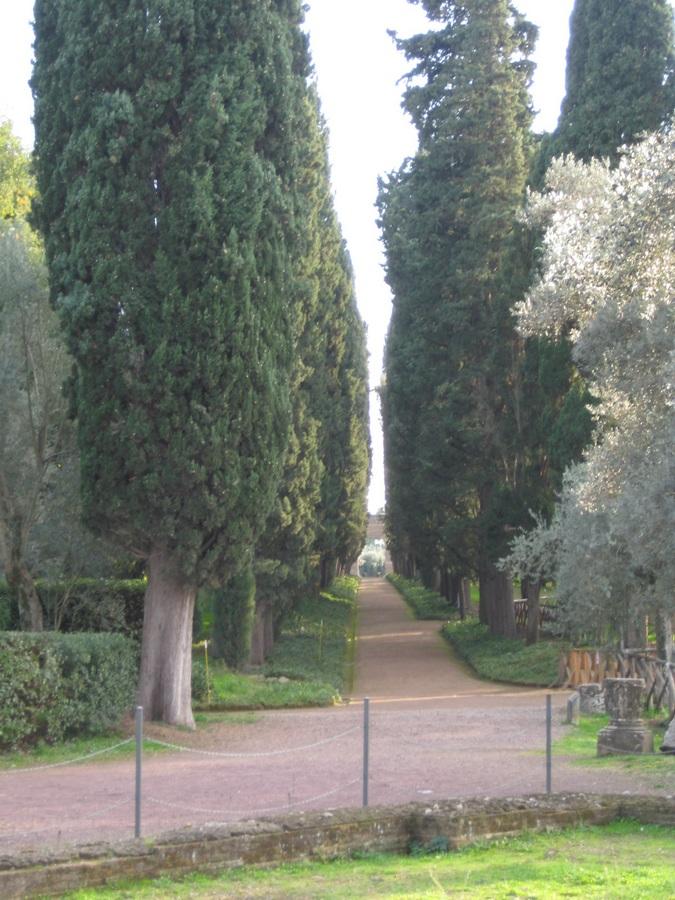 _IMG_2401_villa-adriana