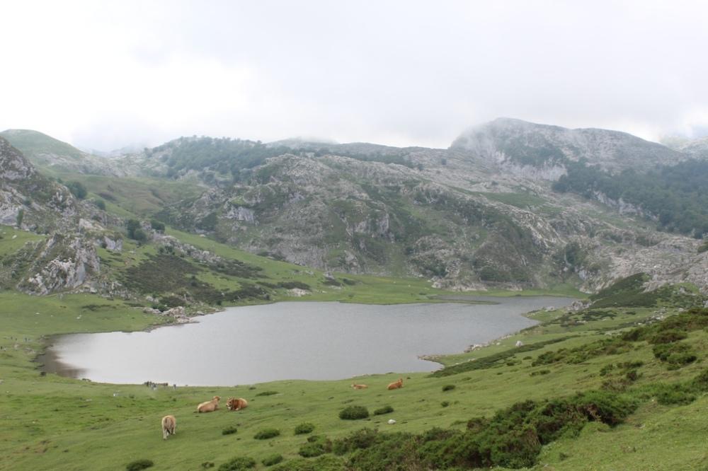 lagos-covadonga_asturias_espana_IMG_2021