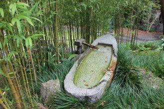 jardin-de-te_san-francisco_usa_IMG_2804