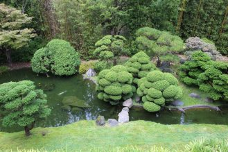 jardin-de-te_san-francisco_usa_IMG_2810