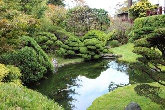 jardin-de-te_san-francisco_usa_IMG_2830