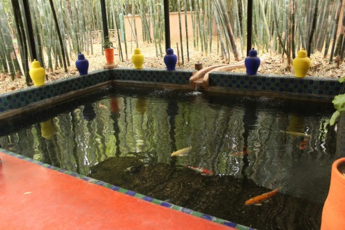 jardines_majorelle_marrakech_IMG_0810