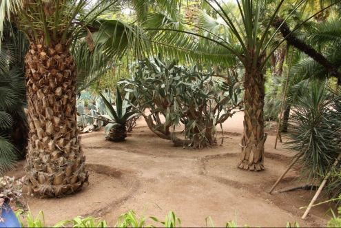 jardines_majorelle_marrakech_IMG_0816