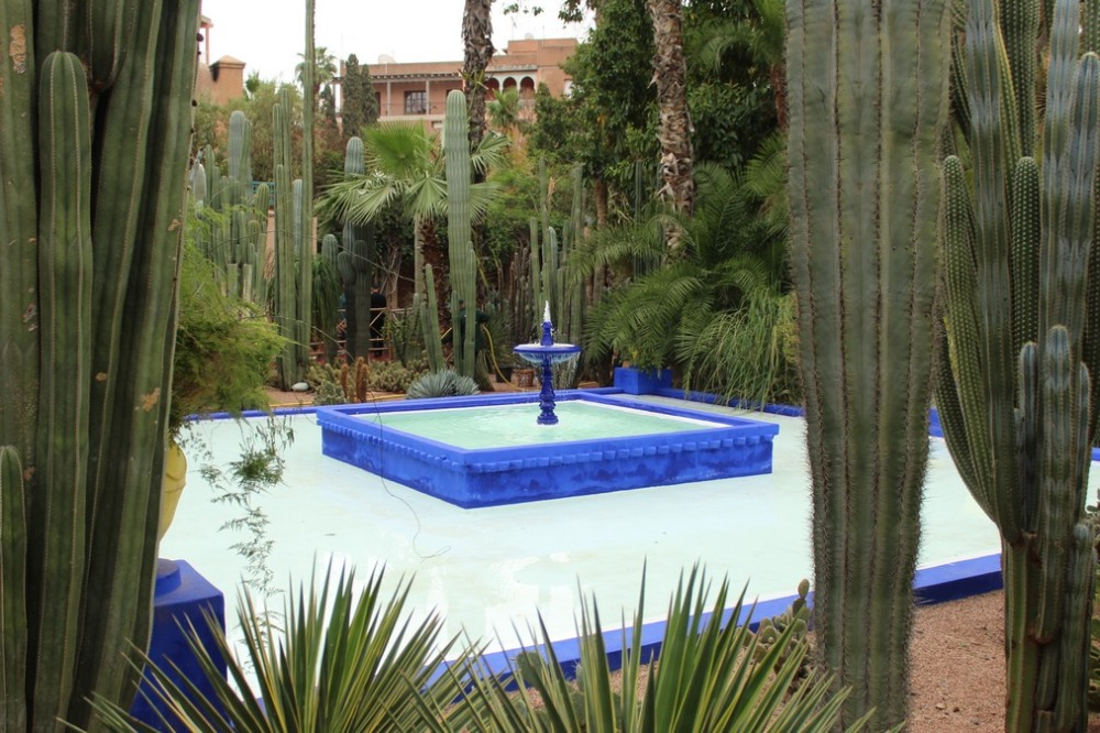jardines_majorelle_marrakech_IMG_0891