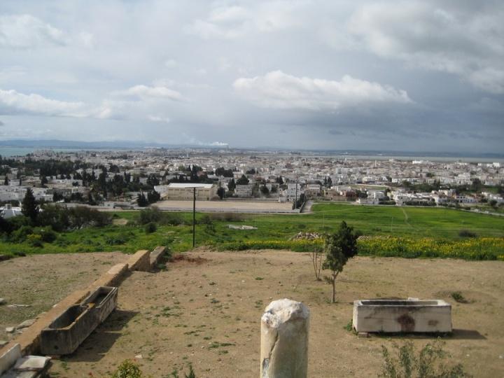 cartago_tunez_IMG_1385