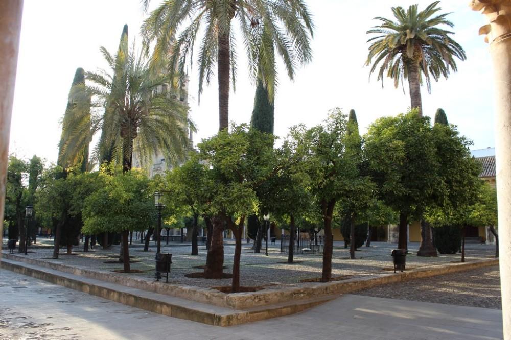 mezquita-catedral_cordoba_spain_IMG_9322
