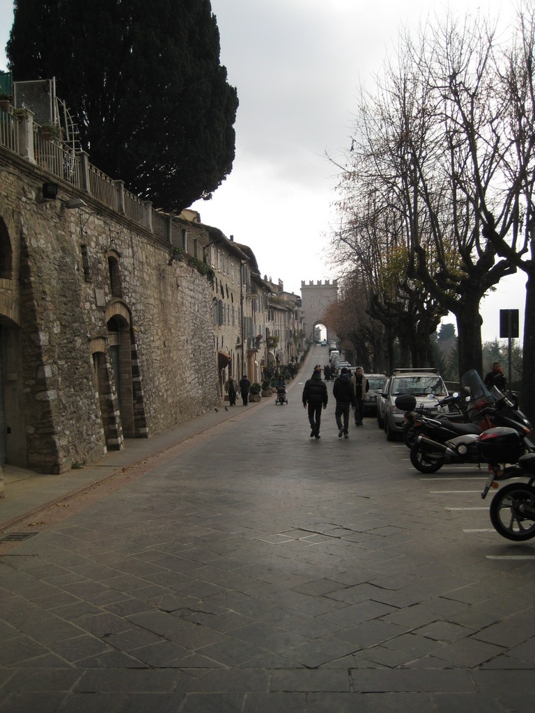 asis_italia_IMG_2503