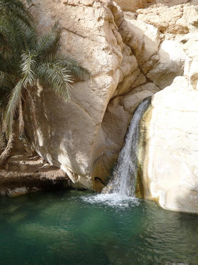 oasis-chebika_tunez_P1010558