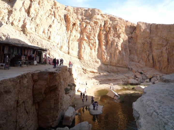 oasis-chebika_tunez_P1010568