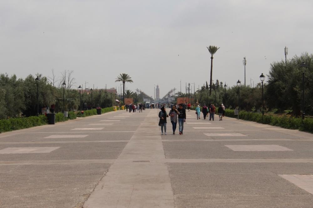 jardines_menara_marrakech_img_0955