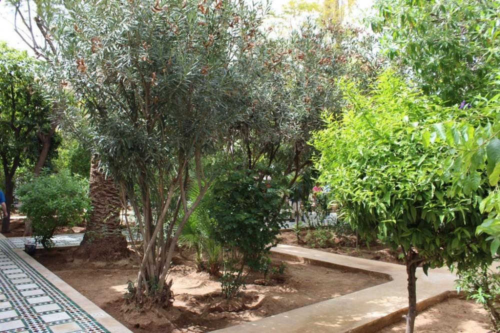 palacio-bahia_marrakech_marruecos_img_9680