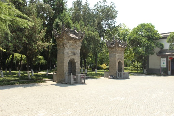 pagoda-ganso-salvaje_xian_china_IMG_6024