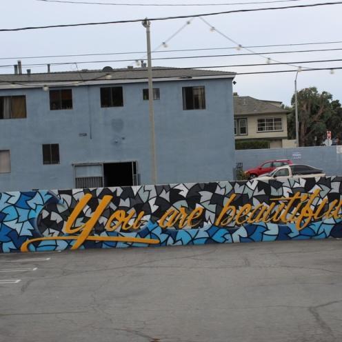 venice-beach_los_angeles_usa_IMG_3920