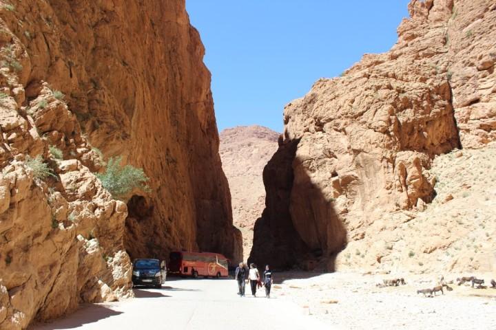 excursion-desierto_marruecosIMG_9937